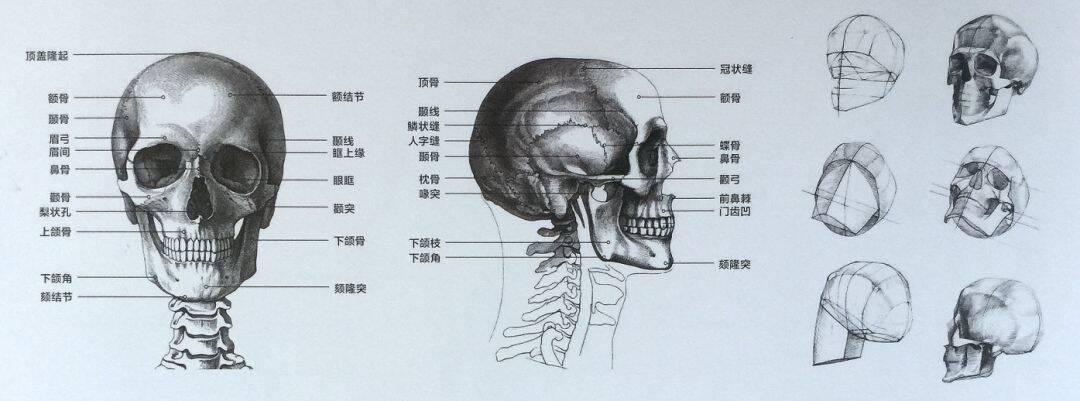 重庆美术集训,重庆十大画室06
