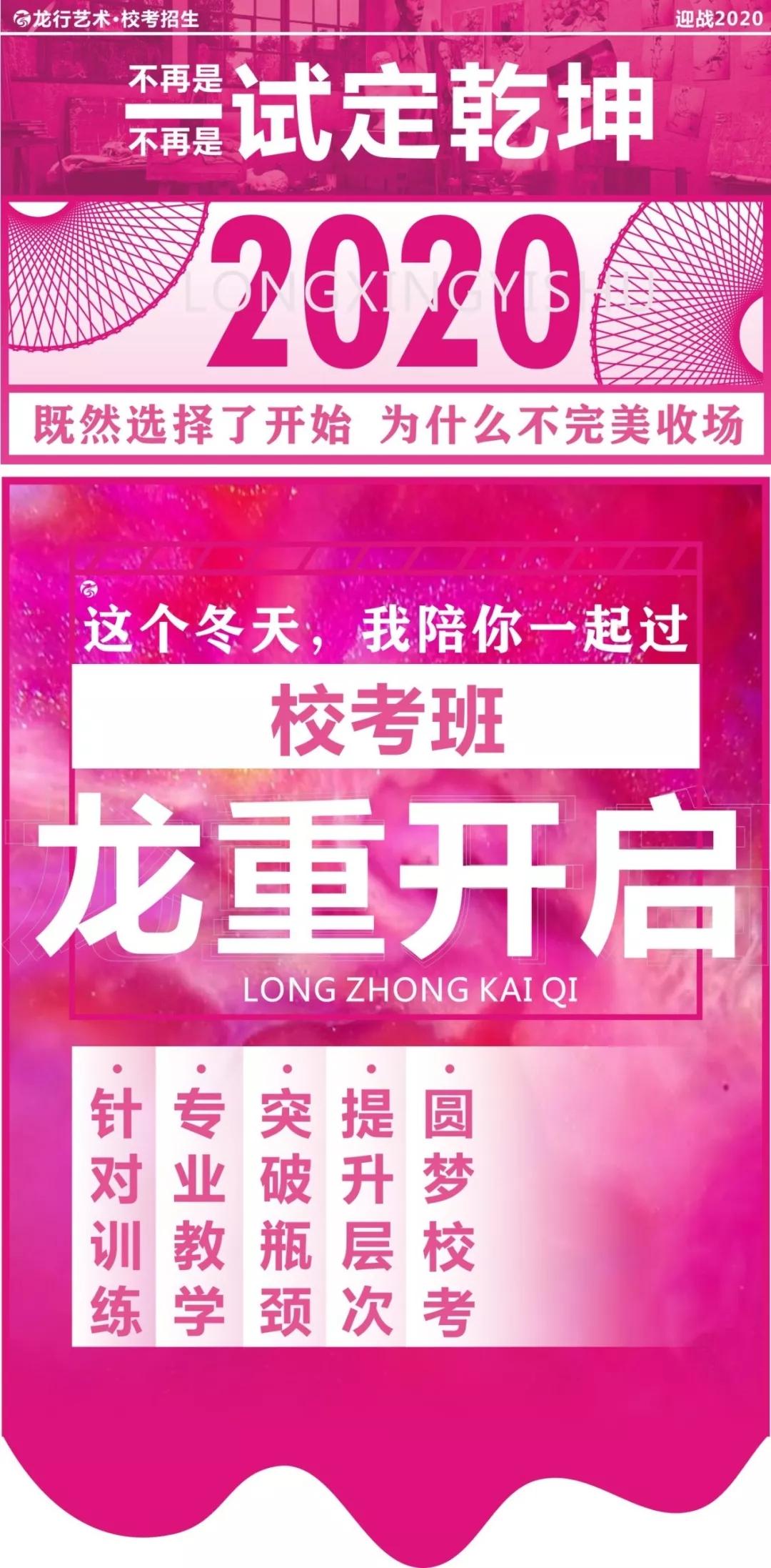 2020龙行艺术校考招生简章