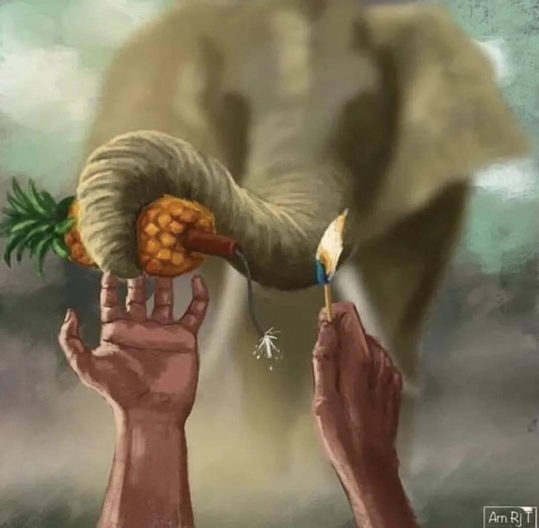 重庆艺考画室资讯 | 怀孕母象被人类投喂炸弹惨死,艺术家哭着为它作画!