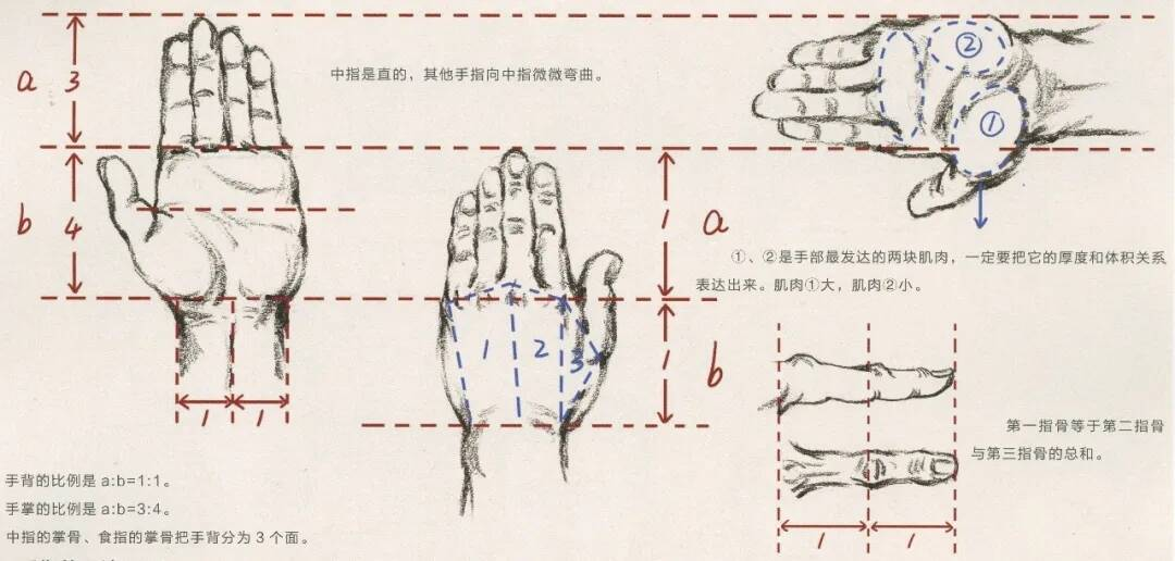 重庆美术培训画室:画人难画手,画好手速写事半功倍!