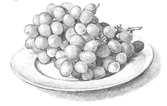 美术初学者超实用的水果静物素描技巧!